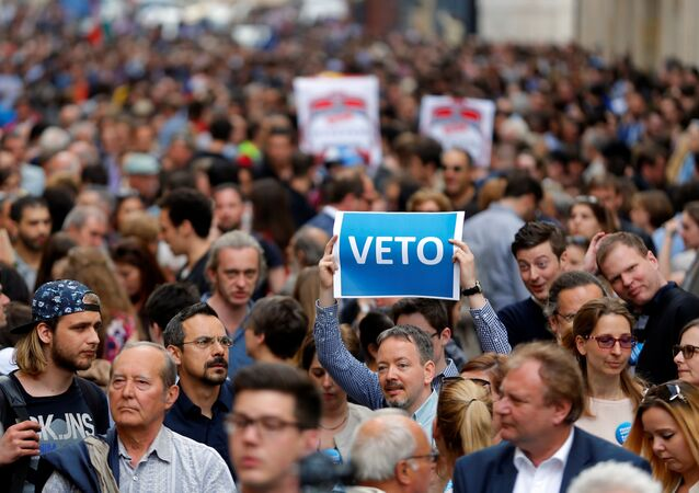 A demonstrator holds up a banner saying Veto during a rally against a new law passed by Hungarian parliament which could force the Soros-founded Central European University out of Hungary, in Budapest, Hungary, April 4, 2017.