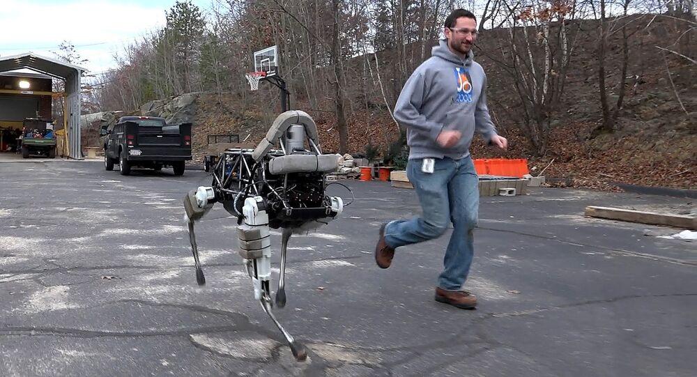 Boston Dynamics' quadruped robot, Spot.