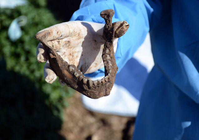 This image released by the the Mass Graves Directorate of the Kurdish Regional Government shows a human jaw bone exhumed from a mass grave containing Yazidis killed by Islamic State militants in the Sinjar region of northern Iraq in 2015