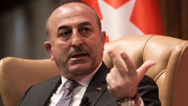 Turkish Foreign Minister Mevlut Cavusoglu speaks during a discussion on Turkey-US Strategic Partnership: Looking to the Future at the National Press Club in Washington, DC, on March 21, 2017 - Sputnik International