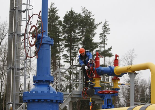 The ceremony of launching the JSC Gazprom's gas distribution station Zapadnaya opened after reconstruction near the village of Atolino (Minsk District). (File)