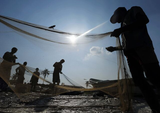 Sri Lankan fishermen sort their catch in a fishery harbor in Colombo, Sri Lanka (File)