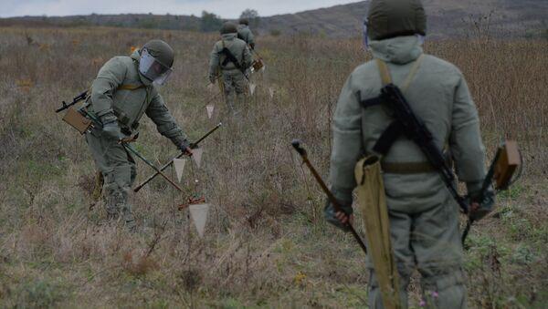 Mine clearance specialists. (File) - Sputnik International