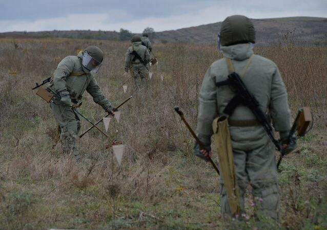 Mine clearance specialists. (File)