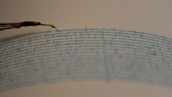 View of a seismograph. (File) - Sputnik International