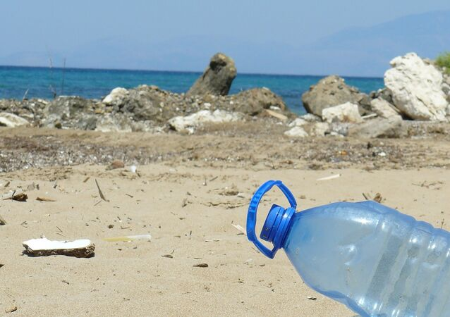 Plastic bottle on a beach. File photo.