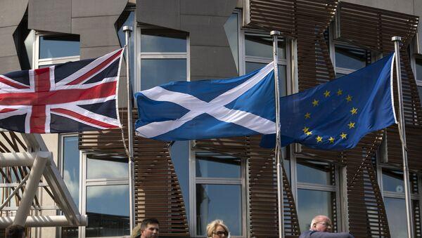 A Scottish Saltire (C) flies between a Union flag (L) and a European Union (EU) flag in front of the Scottish Parliament building in Edinburgh, Scotland on June 27, 2016. - Sputnik International