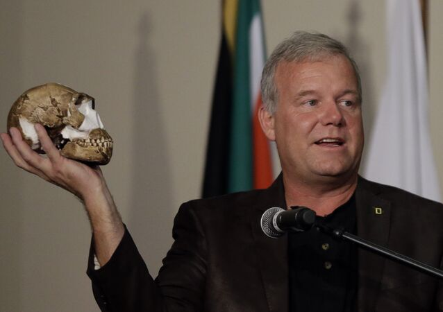 Lee Berger, a professor at the University of the Witwatersrand, holds a reconstruction of the skull of Homo naledi at Magaliesburg, South Africa, Thursday, Sept. 10, 2015.