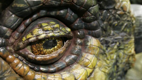 A close-up of the eye of the Ankylosaurus dinosaur is shown Wednesday, June 20, 2007 in Tacoma, Wash. - Sputnik International