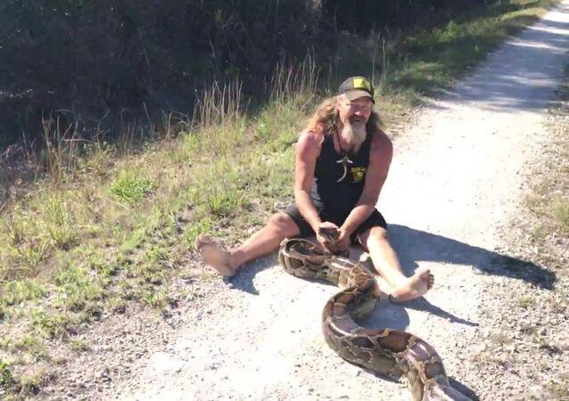 Python Hunter