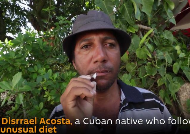 Glass-eater: Cuban Native Follows Very Unusual Diet