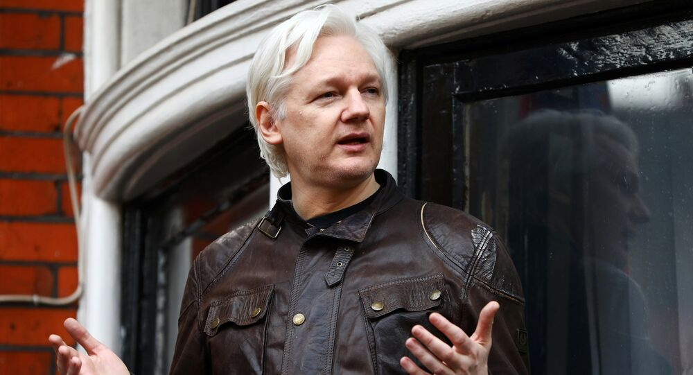 WikiLeaks founder Julian Assange is seen on the balcony of the Ecuadorian Embassy in London.