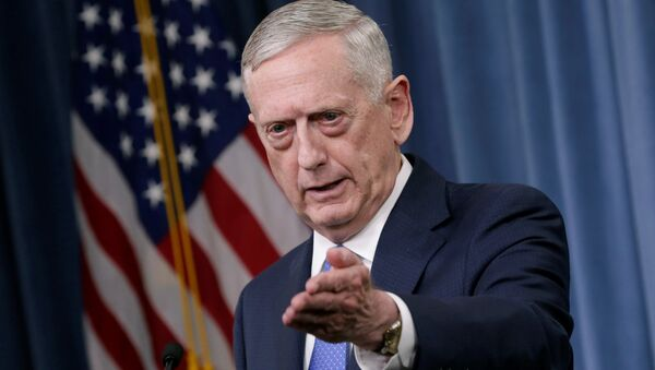 U.S. Defense Secretary James Mattis gestures during a press briefing on the campaign to defeat ISIS at the Pentagon in Washington, U.S., May 19, 2017 - Sputnik International