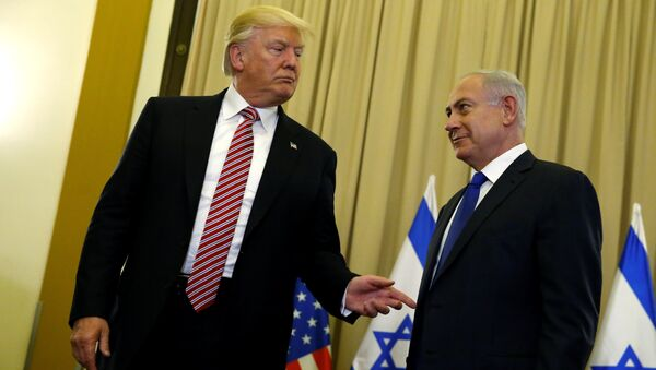 U.S. President Donald Trump (L) and Israel's Prime Minister Benjamin Netanyahu speak to reporters before their meeting at the King David Hotel in Jerusalem May 22, 2017 - Sputnik International