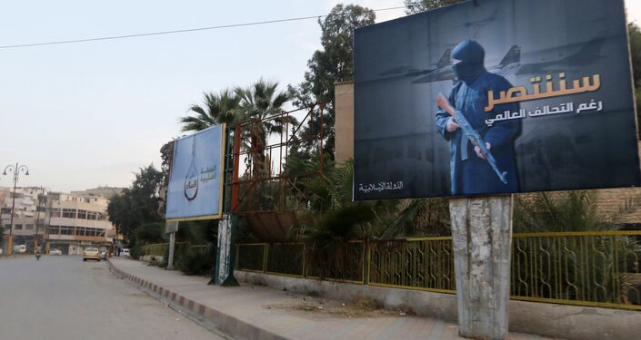 Islamic State billboards are seen along a street in Raqqa, eastern Syria. The billboard (R) reads: We will win despite the global coalition (File)