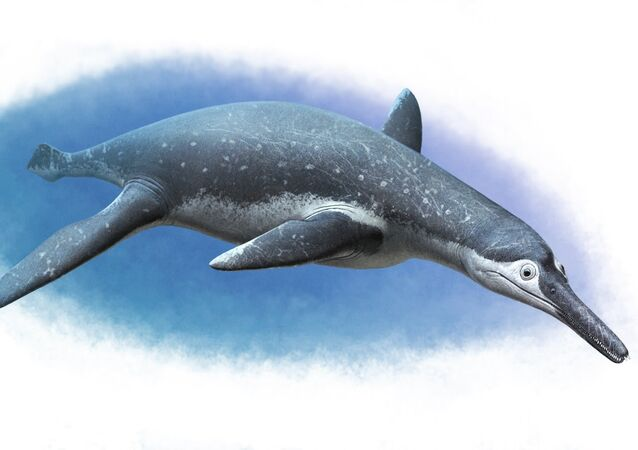 Luskhan itilensis, a new pliosaur from Russia!