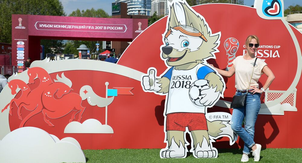 2017 Confederations Cup Park opened in Sochi