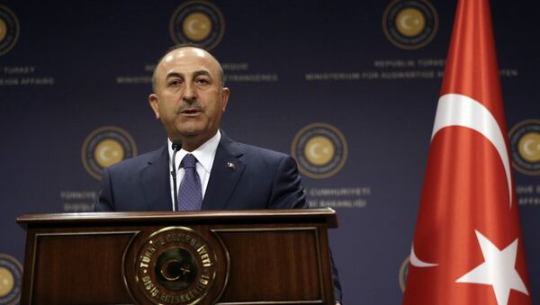 Turkey's Foreign Minister Mevlut Cavusoglu speaks during a joint news conference with German Foreign Minister Sigmar Gabriel in Ankara, Turkey, Monday, June 5, 2017 - Sputnik International