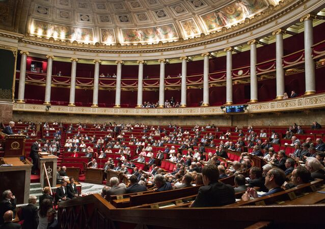 A meeting of the National Assembly (lower house of parliament) in France