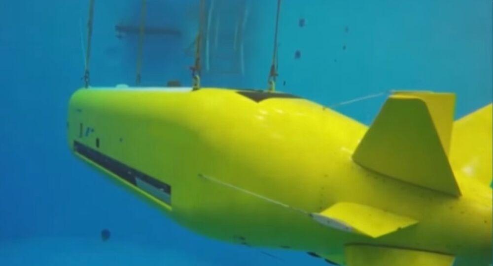 Echo Voyager Underwater Drone