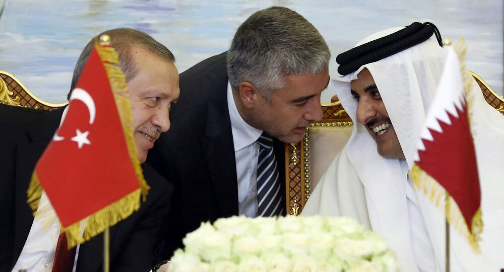 Turkey's President Recep Tayyip Erdogan, and Qatar's Emir Tamim bin Hamad Al Thani speak, with unidentified Turkish translator at centre, during a meeting in Doha, Qatar (File)