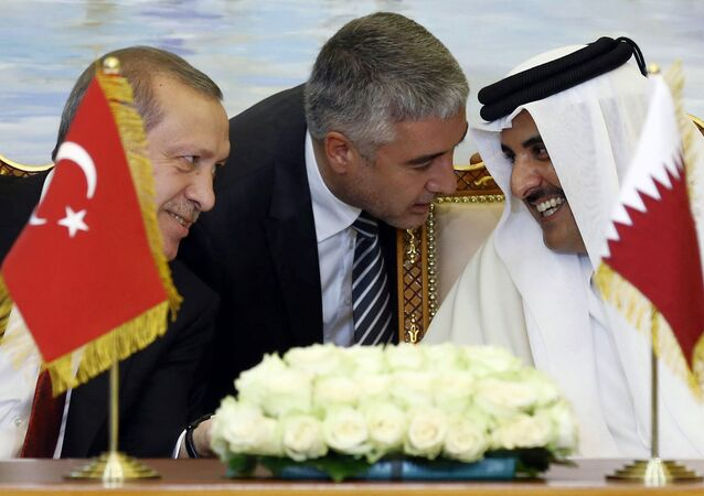 Turkey's President Recep Tayyip Erdogan, and Qatar's Emir Tamim bin Hamad Al Thani speak, with unidentified Turkish translator at centre, during a meeting in Doha, Qatar (File)