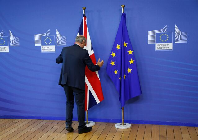 Flags are arranged at the EU headquarters as Britain and the EU launch Brexit talks in Brussels, June 19, 2017