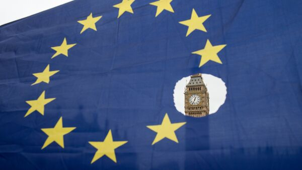 This file photo taken on March 29, 2017 shows a pro-remain protester holds up an EU flag with one of the stars symbolically cut out in front of the Houses of Parliament shortly after British Prime Minister Theresa May announced to the House of Commons that Article 50 had been triggered in London on March 29, 2017. - Sputnik International