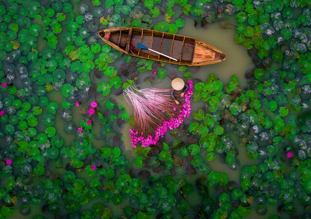 Hey Down There! Highlights of the International Drone Photography Contest 2017