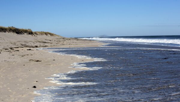 Water nearly reaches the dune barrier at Cape Cod's Ballston beach in Truro, Massachusetts. - Sputnik International