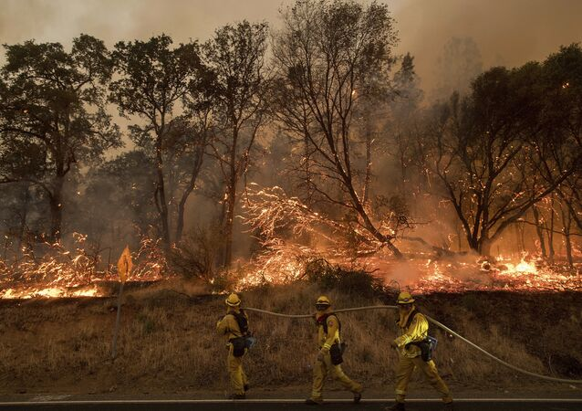 Firefighters battle a wildfire as it threatens to jump a street near Oroville, Calif., on Saturday, July 8, 2017. Evening winds drove the fire through several neighborhoods leveling homes in its path.
