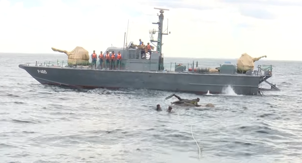 Navy rescues an elephant at sea