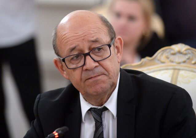 Jean-Yves Le Drian, French Minister for Europe and Foreign Affairs