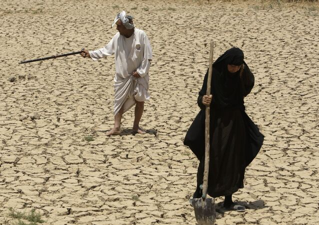 Below-average rainfall and insufficient water in the Euphrates and Tigris rivers - something the Iraqis have blamed on dams in neighboring Turkey and Syria - have left Iraq bone-dry for a second straight year.