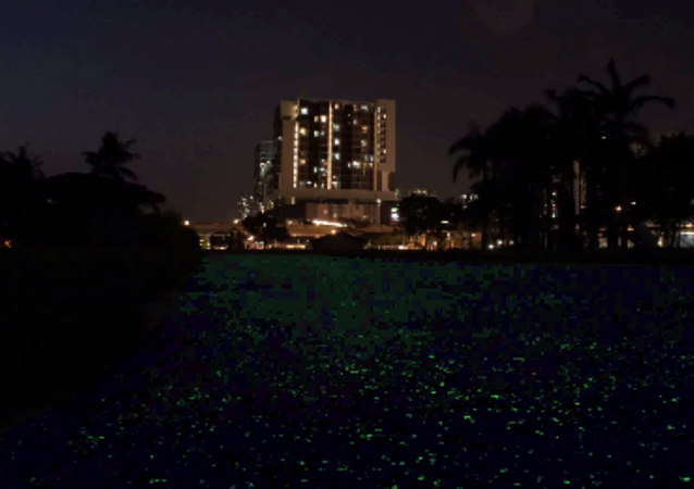 Singapore Tests Out New Glow-in-the-Dark Technology For Night Owls