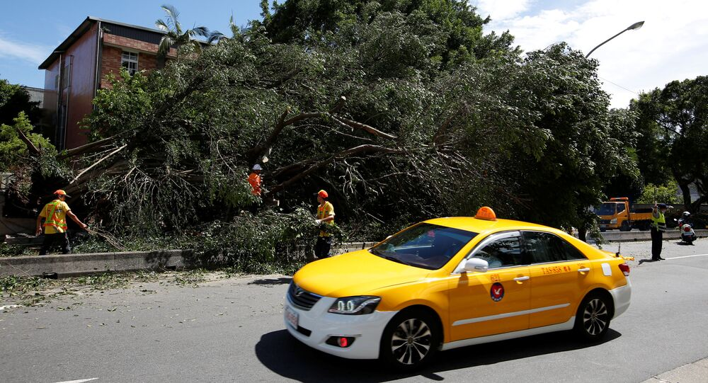 A taxi drives among trees uprooted by strong winds brought by Typhoon Nesat in Taipei, Taiwan July 30, 2017