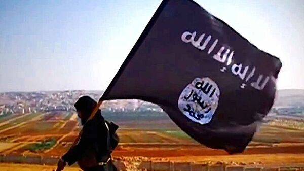 Daesh fighter - Sputnik International