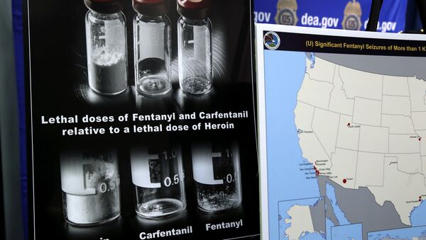 Posters comparing lethal amounts of heroin, fentanyl, and carfentanil, are on display during a news conference about the dangers of fentanyl, at DEA Headquarters in Arlington, Tuesday, June 6, 2017. - Sputnik International