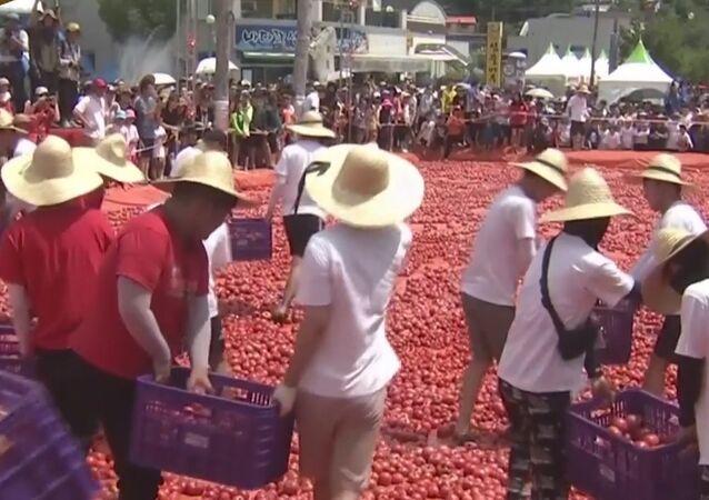 Tomato Festival Kicks Off In South Korea