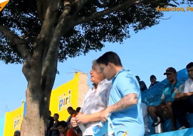 Tree Becomes Football Fan