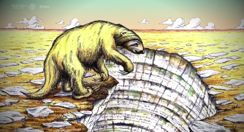 Fossils of New Giant Sloth Species Discovered in Mexico By Cave Diver