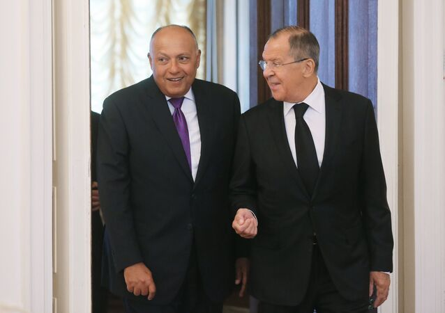 Russian Foreign Minister Sergei Lavrov meets with Egyptian Foreign Minister Sameh Shoukry