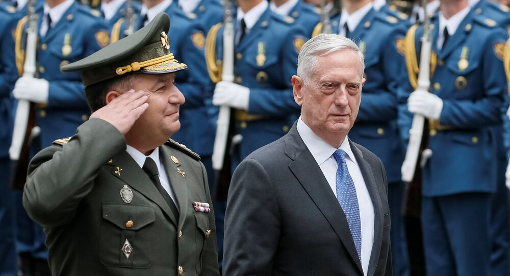 US Secretary of Defense James Mattis and Ukraine's Defence Minister Stepan Poltorak walk past honour guards during a welcoming ceremony in Kiev, Ukraine August 24, 2017 (File photo).