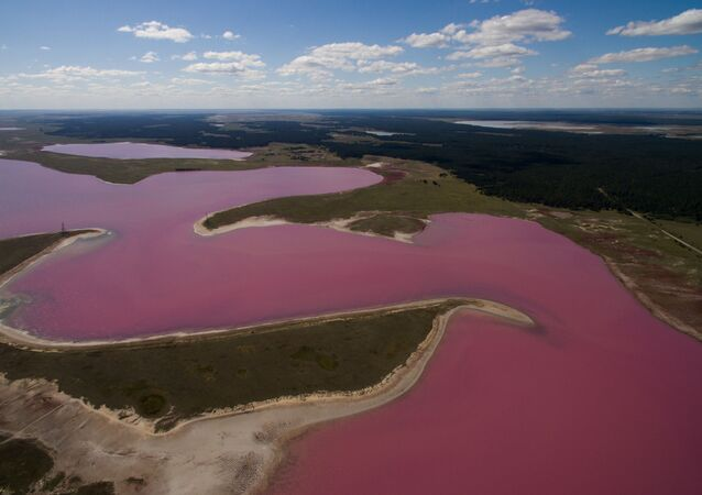 Pink and Salty: Incredible Lakes of Russia's Altai Region