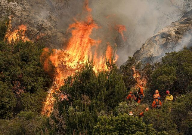 A crew with California Department of Forestry and Fire Protection (Cal Fire) battles a brushfire on the hillside in Burbank, California