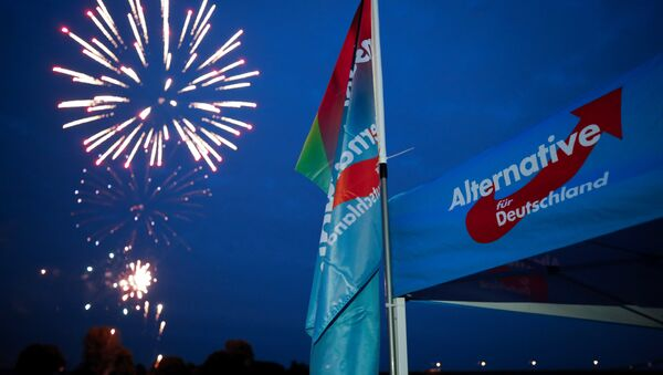 Germany's far-right Alternative for Germany AfD party burn a private fireworks during an election campaign tour by ship on the river Rhine near Krefeld, western Germany, September 4, 2017. - Sputnik International
