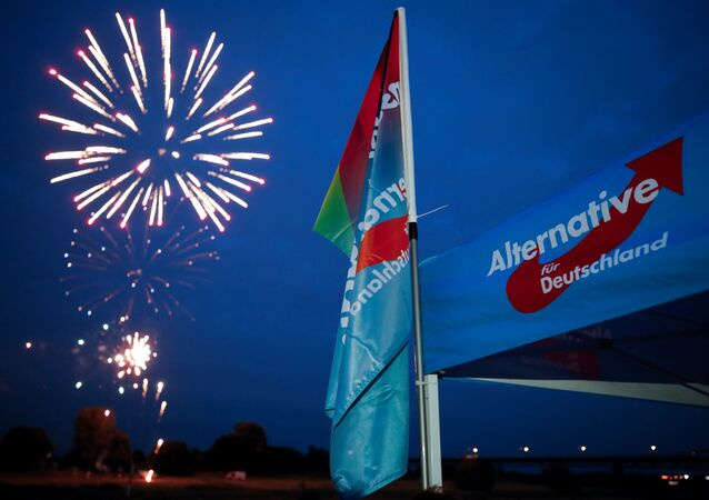 Germany's Alternative for Germany AfD party burn a private fireworks during an election campaign tour by ship on the river Rhine near Krefeld, western Germany, September 4, 2017.