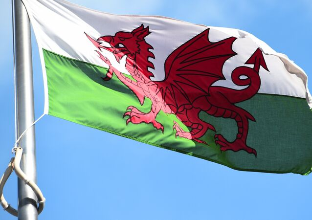 The Welsh flag flies outside the national assembly building in Cardiff on September 24, 2015.