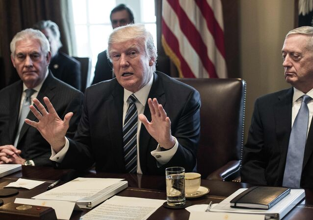US President Donald Trump speaks to the press with Secretary of State Rex Tillerson (L) and Defense Secretary James Mattis (R) as he meets with his Cabinet in the Cabinet Room at the White House in Washington, DC