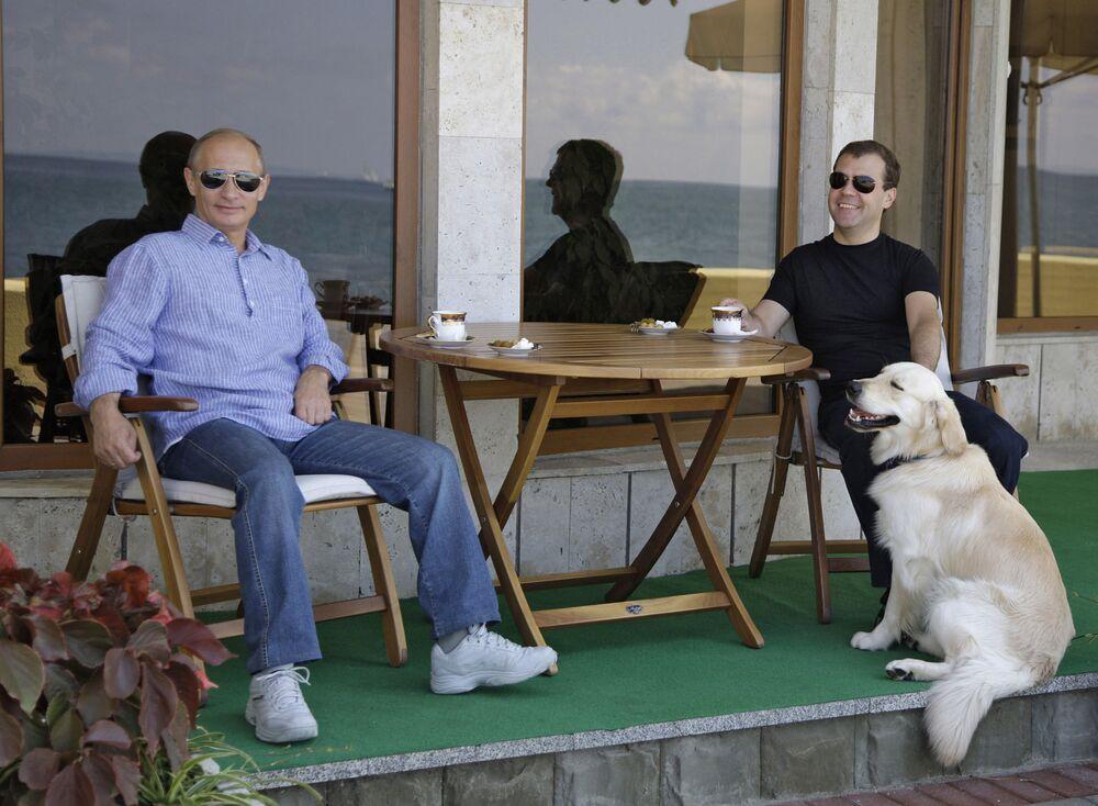 Putin's Love of Animals Through His Presidential Career